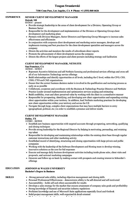 Client Development Manager Sle Resume Cool Insight Manager Resume Pictures Inspiration Resume