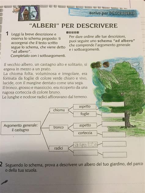 descrizione di un giardino classe terza il testo descrittivo descrizione di un