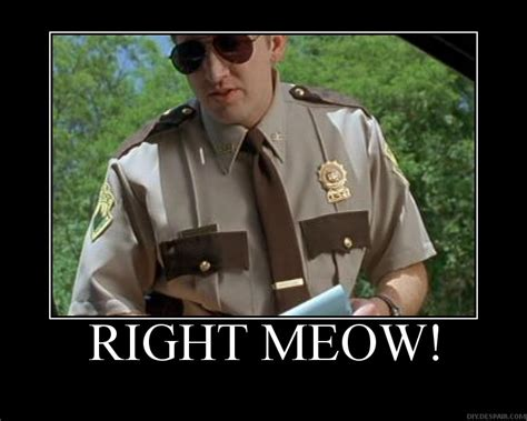 Super Troopers Meme - not so funny meow is it hepper
