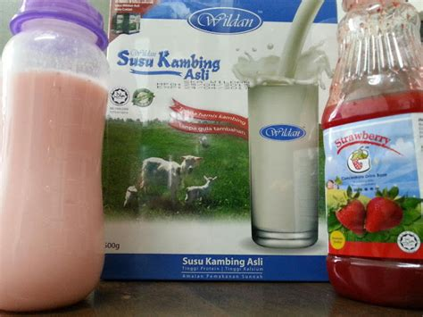resipi susu kambing wildan strawberry akalils delight