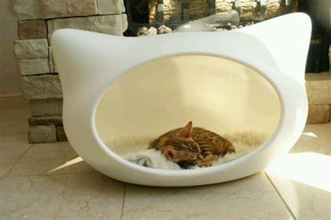 kitten bed whiskas cat bed kitties gt
