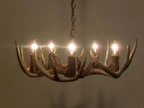 Small Deer Antler Chandelier 5 Light Real Whitetail Deer Antler Chandelier