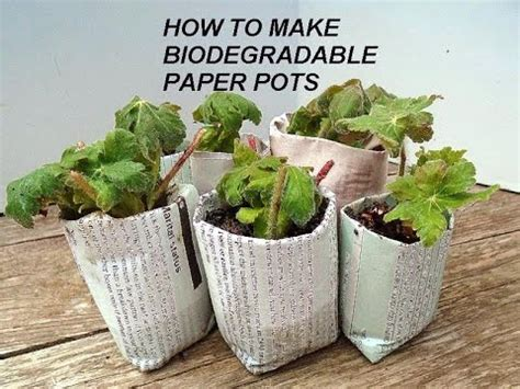 How To Make Paper Plant Pots - diy best biodegradable newspaper pots plant seeds or