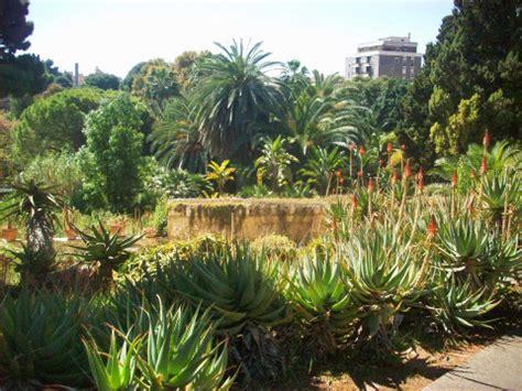 giardino botanico cagliari scelte per te giardino i migliori giardini e orti