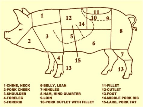 how to butcher a pig diagram two and a farm seda the pig the post