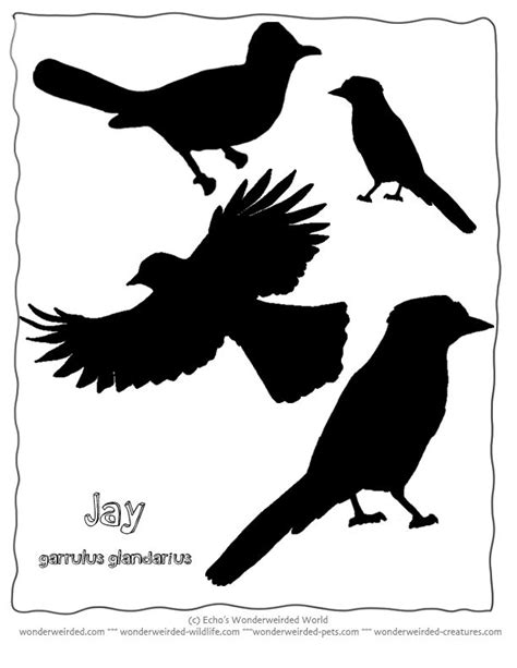 silhouette templates 43 best stencils images on
