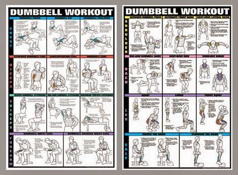 bodybuilding fitness exercise for bodybuilding photo