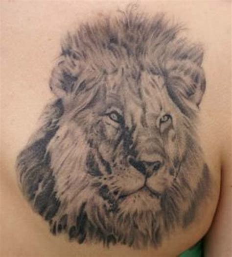 leo lion tattoo designs leo design collection