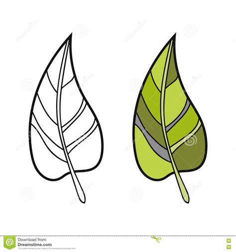 imagenes de hojas a blanco y negro hoja blanco y negro coloreada para el libro de colorear