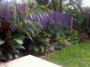 balinesischer garten tropical balinese garden freshwater sydney landscapers