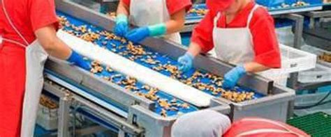 manejo de instalaciones para uf0698 manejo de instalaciones para la elaboraci 243 n de productos alimentarios