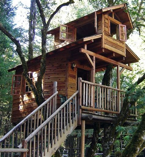 Tree Houses For by Amazing Cool Tree House Ideas Home Design
