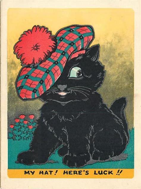 hat heres luck black cat wears large scottish tam thistles  background left white