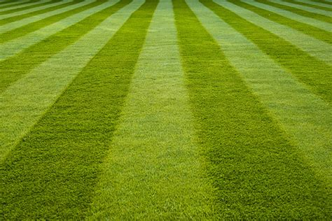 lawn pattern roller how to create picture perfect lawn mowing patterns