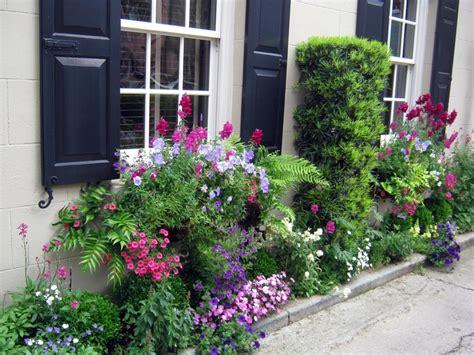 window box flower ideas flower box ideas