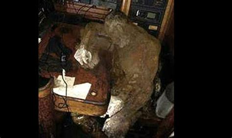 old boat found black sea mummified captain found in ghost ship he sailed in for
