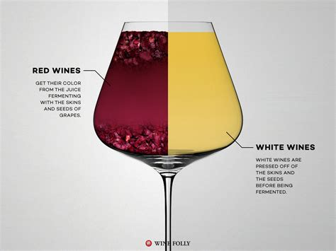 white wine wine vs white wine the differences wine folly