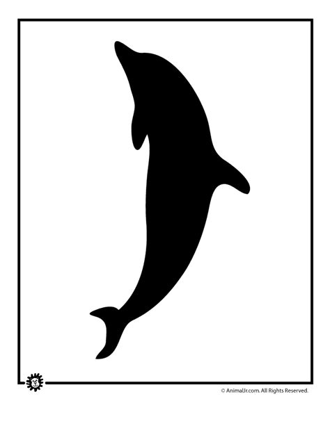 dolphin template dolphin template woo jr activities