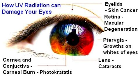 Blue Light Eye Damage by Sun Damage To Effects Risks Prevention And