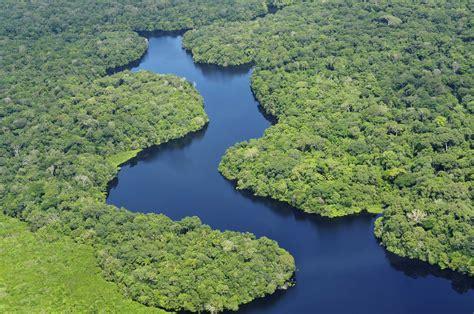 amazon america amazon rainforest brazil south america collection world