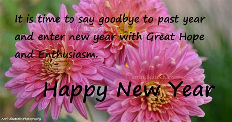 daily thoughts picture message wishes you happy new year