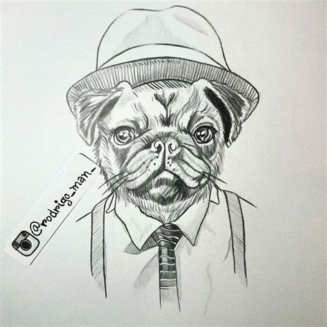 cool drawings of pugs 17 best images about pug on pug meme the nut and pug