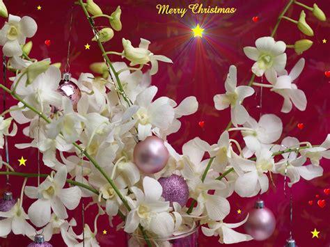 Merry christmas desktop cute wallpapers desktop backgrounds christmas