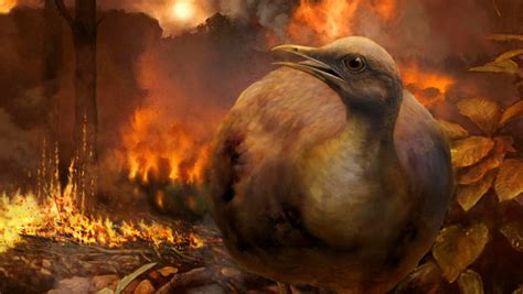 dinosaur killing asteroid impact devastated forests wiped
