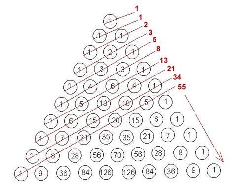 sequential pattern adalah the fascinating fibonacci numbers environment clean
