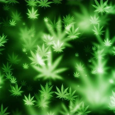 whatsapp wallpaper weed marijuana live wallpaper android apps on google play