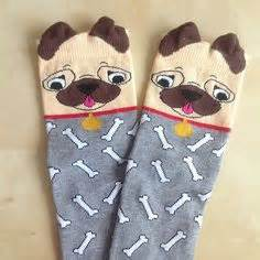 pug socks uk 1000 images about pug stuff on pug speed bump comic and speed bump