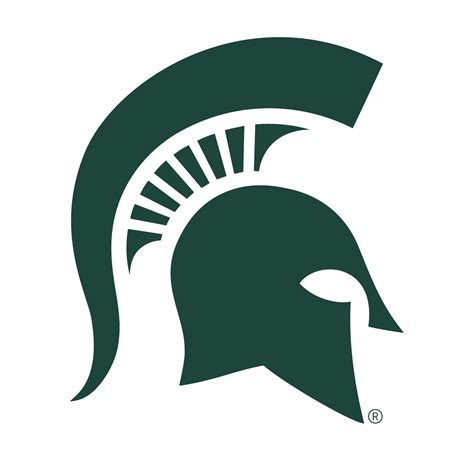 michigan state colors michigan state spartans swimmers
