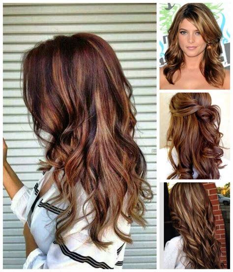 long brown hairstyles with parshall highlight how to go rich brown hair color blonde highlights hair colour your