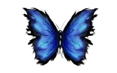 blue butterfly tattoo designs 7 awesome butterfly designs and ideas