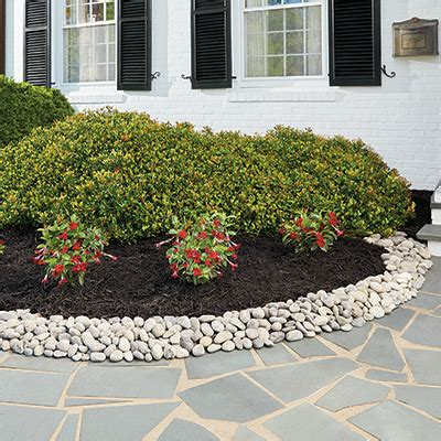 curb appeal landscaping ideas  home depot