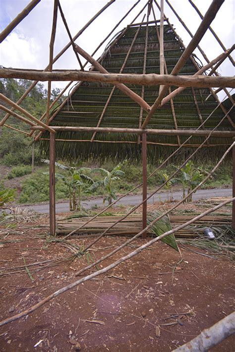 Palm Thatch Roof Photo Album Of Grass Ak Aak And Palm Thatch Roofs Of