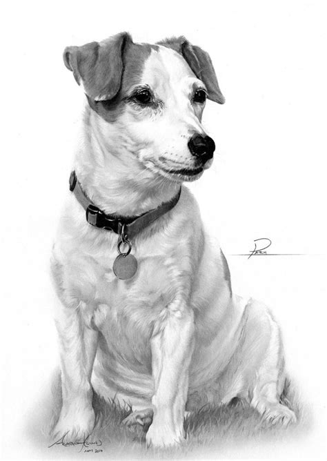 Commission - Jack Russell Terrier by Captured-In-Pencil on