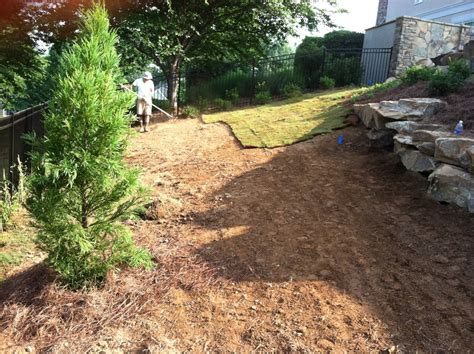 curb appeal lawn care curb appeal landscaping and lawncare the meet your budget
