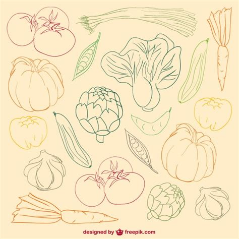 Vegetables Colour Doodle Vector Free
