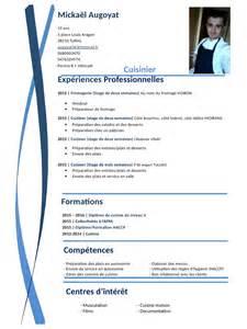 cv pdf par chris fichier pdf