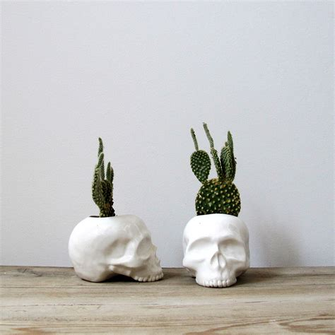 cactus planter ceramic skull planter perfect for cactus succulent or air
