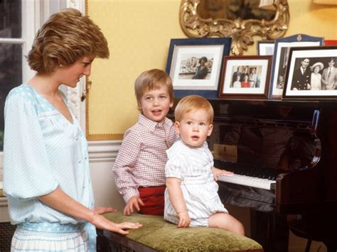 princess diana s children prince william and harry young memes