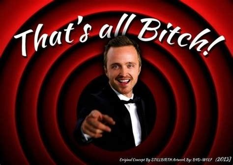 Jesse Pinkman Memes - how breaking bad should have ended bbm live travel
