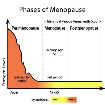 images perimenopause estrogen are you menopause age early peri post symptoms weight gain