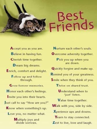 Bestfriend Birthday Quotes Quotes Imagess Birthday Wishes Quotes For Friends In Marathi