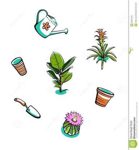 indoor plants  garden tools stock vector illustration
