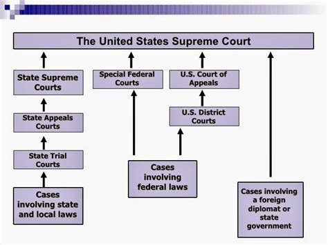 Federal Court Search Free Federal Court Structure Diagram Federal Free Image About