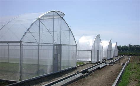 membuat rumah green house greenhouse adalah rumah tanaman membangun greenhouse