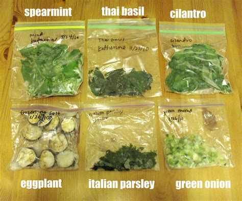 how to freeze garden vegetables freezing fresh herbs foodie friday