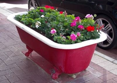 bathtub gardens the artistic invasion of beaufort street and why it s better for it beaufort and